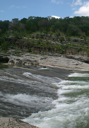Pedernales Falls and River - vegetation of Texas Hill Country, in the Edwards Plateau ecoregion.