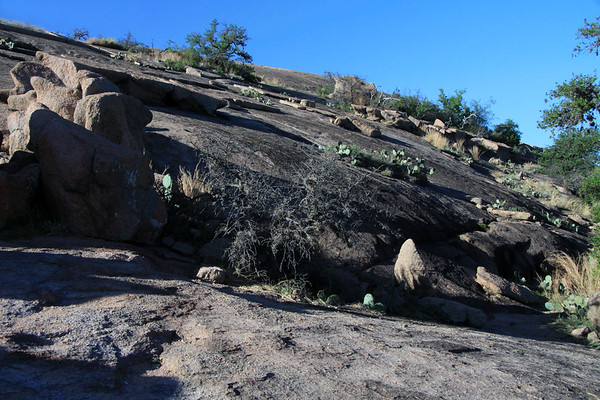 Along southeastern slope of Enchanted Rock - late afternoon, early Spring season.