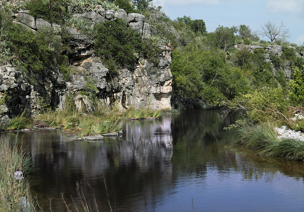 Reflections upon the far eastern arm of Lake Marble Falls - here at the confluence of Flat Rock Creek with the Colorado River - amongst the sedges, cottonwood, live oak, cacti, and yucca vegetation amongst the sedimentary limestone rock.