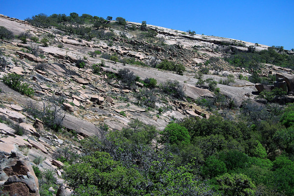 Southwestern pink granite slope of Little Rock -  among the vegetation in the Edwards Plateau ecoregion.