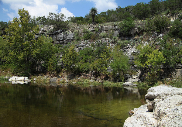 Limestone lined pool along Flat Rock Creek - amongst the riparian vegetation (sedges, willows, and cotonwoods) and hill country vegetation (live oaks, junipers, prickly pear cactus, and yuccas - in the Edwards Plateau ecoregion - Burnet county.