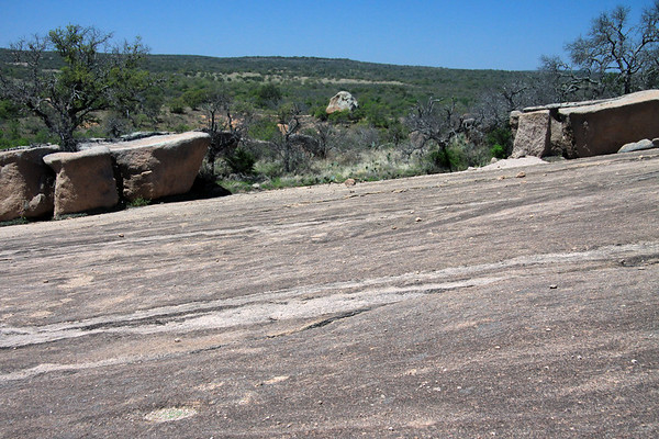 Dying oaks among the granite boulders, pricklypear cactus, and tussock grass - along the slope of Little Rock, with the outcrop distal among the oaks.