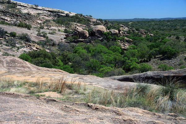 The pink granite here at the Enchanted Rock State Natural Area - is part of the Llano Uplift, an intrusive igneous (volcanic) pluton of Precambrian rock (prior to about 540 million years ago) - geologist actually date this rock to around 1 billion years old, making it some of the oldest volcanic rock in the USA - here viewing from the bear grass and tussock grass, to the oaks along the slope base of Little Rock.