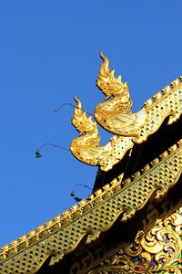 Ubosot of Wat Chedi Luang  Chiang Mai  Thailand (5)