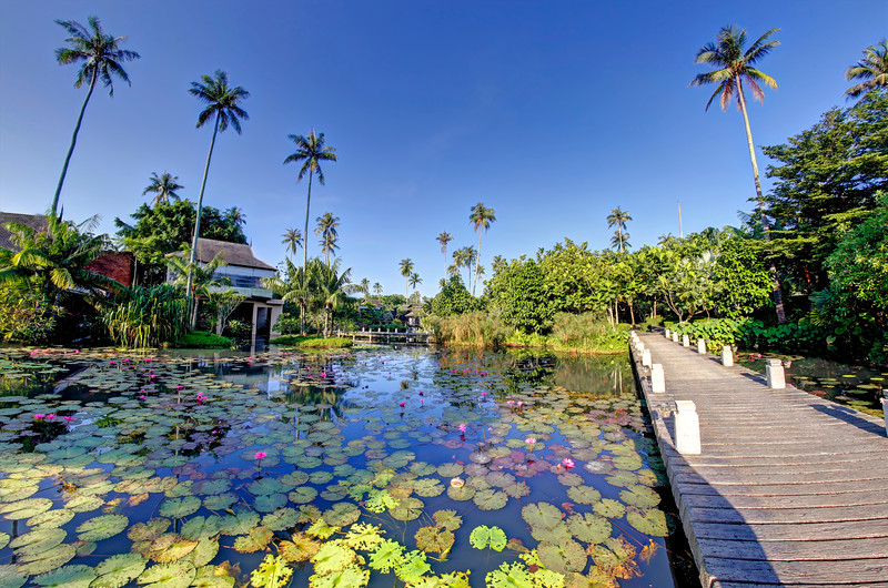 Beautiful Private Tropical Garden in Phuket