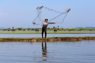 Casting the Net, Thale Noi, Phattalung, Thailand