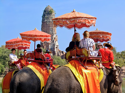 Elephant Tourists, Ayutthaya