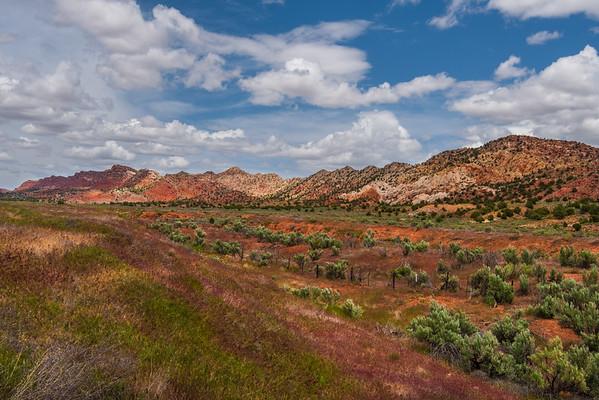Roadside, Southern Utah