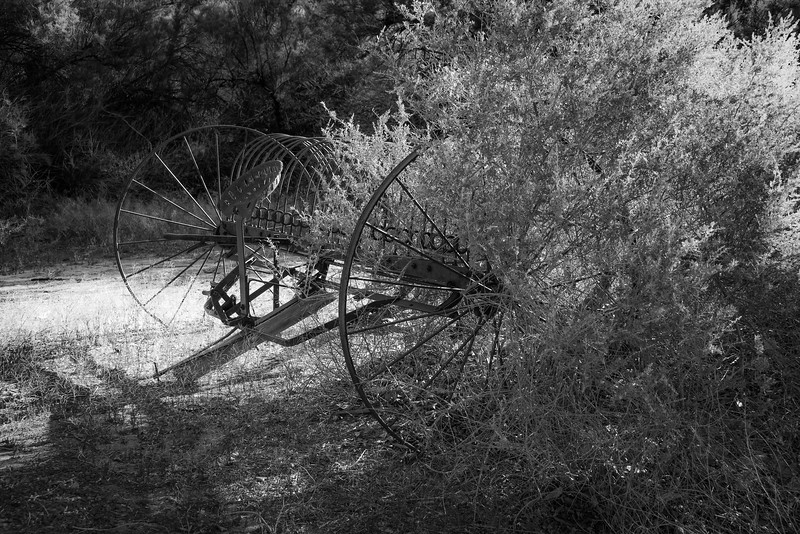Lee's Ferry, Grand canyon, AZ