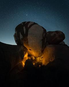 Joshua Tree Shadow on Granite Boulder