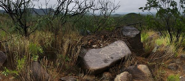 Petroglyph In Rain