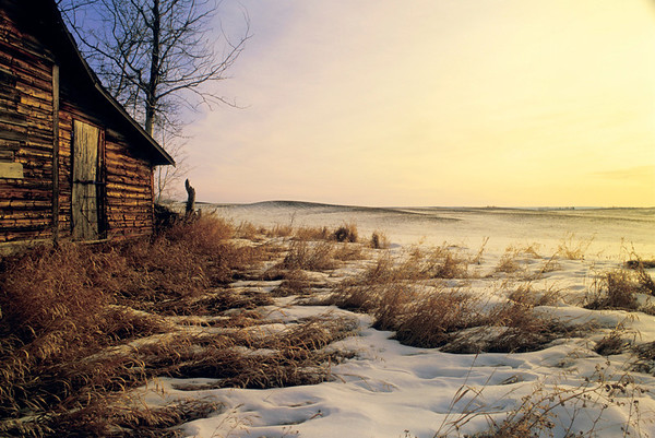 Homestead and Snow
