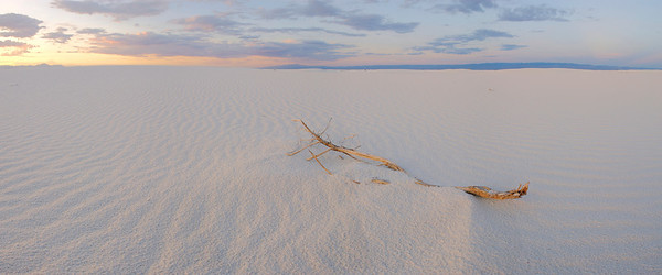 Whitesands At Sunset