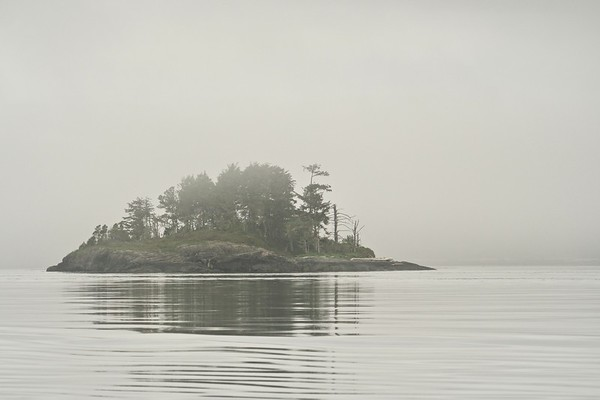 Island In the Fog.