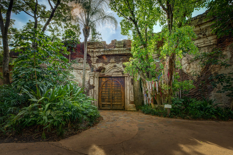 Disney's Animal Kingdom: The Gates Of The Jungle Trek