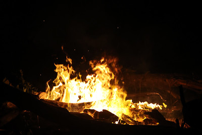 Forest fire burning at night with open flames