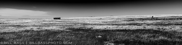 High Plains of New Mexico. The High Plains are a subregion of the Great Plains mostly in the Western United States. From east to west, the High Plains rise in elevation from around 1,800 feet (550 m) to over 7,000 feet (2,100 m). Due to low moisture and high elevation, the High Plains commonly experiences wide ranges and extremes in temperature. This area is also home to the fastest land mammal in North America, the Pronghorn.