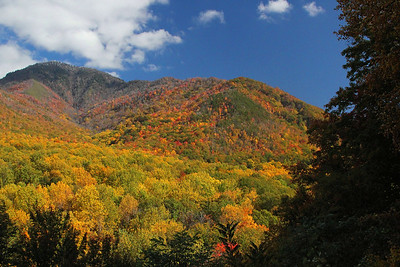 Hills of color, Fall in the Smokies
