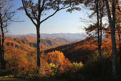 Smokies Overlook, North Carolina