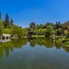 Chinese Garden lake.
