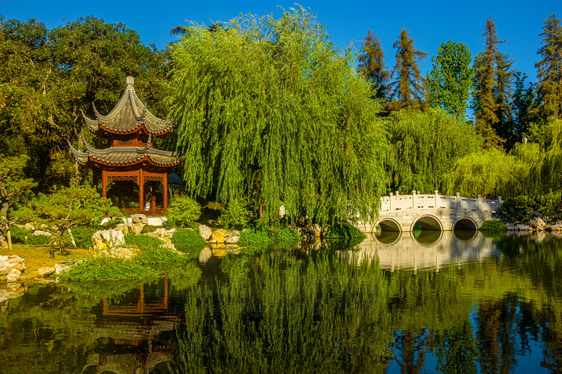 Chinese Garden Lake with pavilion and bridge.