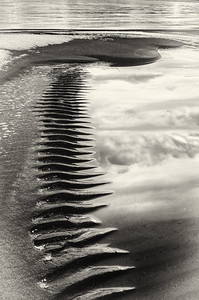 Sand Ripples Abstract