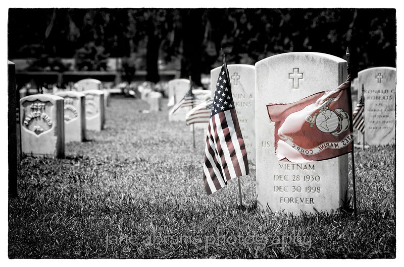 Beaufort National Cemetery  95 2012