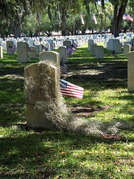 Beaufort National Cemetery  52 2012