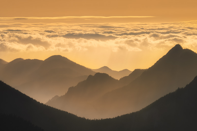 This image is looking out from Hurricane Ridge's Observation Point out toward the first flank of the Olympics rising from the ocean waters of the Straight of Juan De Fuca.  I am staring right toward the sun softly filtered through layers of clouds.