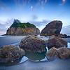 Ruby Beach Tidepool