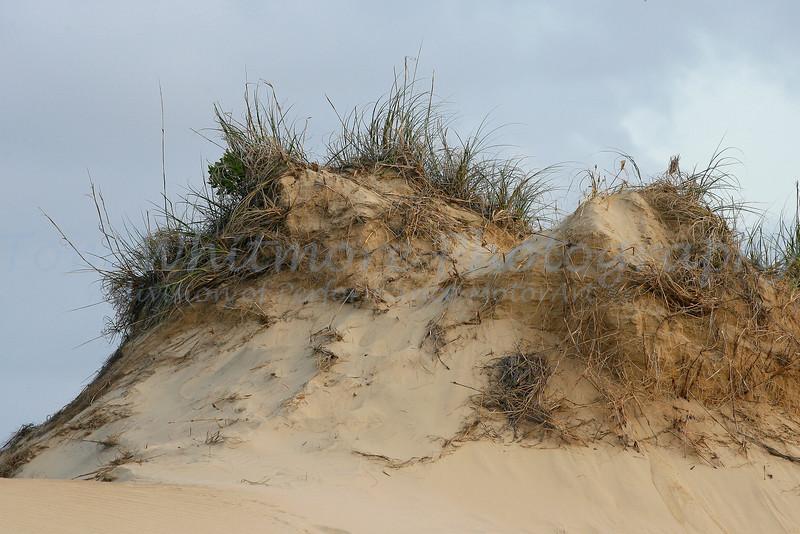Sands of OBX
