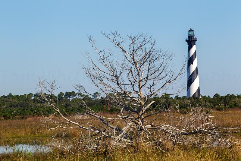 Cape Hatteras Lighthouse area