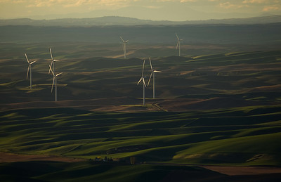 Wind Mills, Steptoe Butte