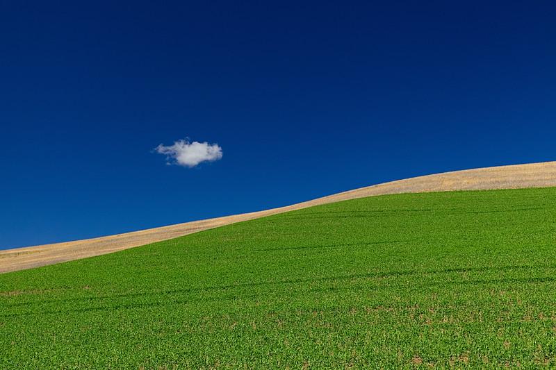 One cloud. The Palouse, Eastern Washington