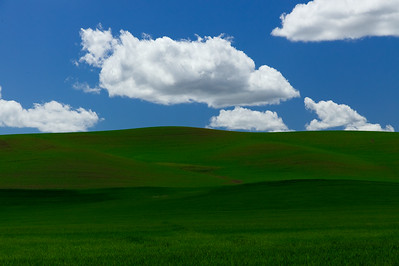 Clouds and green fields. Eastern Washington