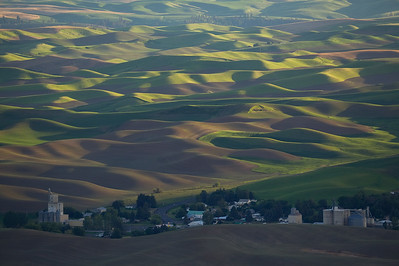 The Hills of Palouse from Steptoe Butte