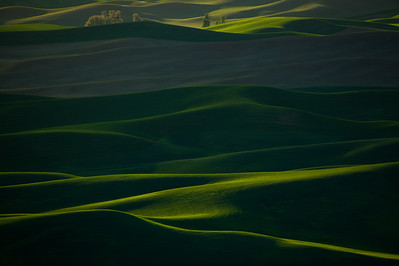 Rolling Green Hills of The Palouse from Steptoe Butte