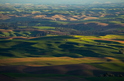 View of the Palouse, Steptoe Butte, Eastern Washinton