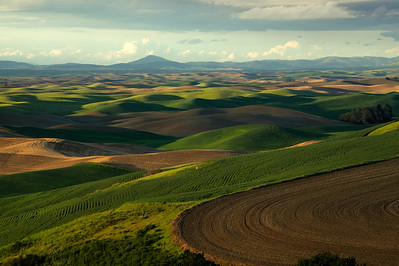 Hills and Paterns. Steptoe Butte