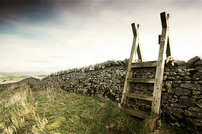 Stile, by Winnets Pass. 2010.