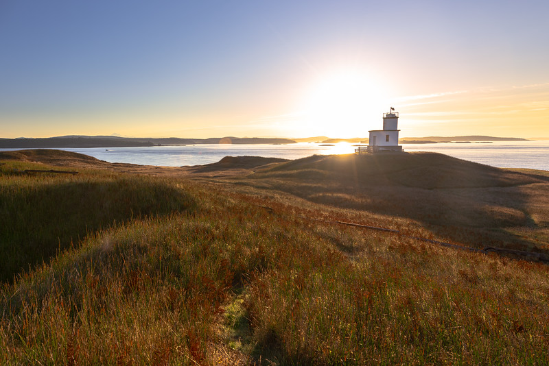 Cattle Point Sunrise