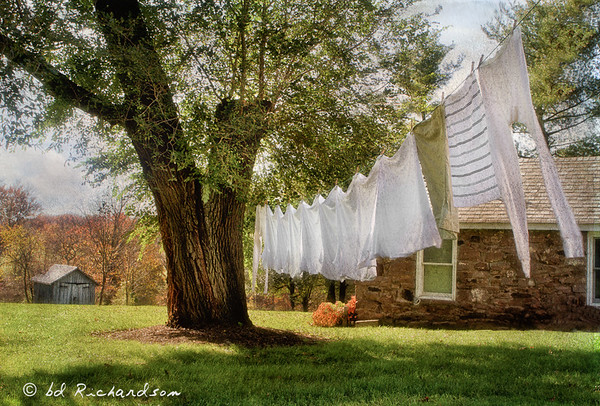 Wash Day, Poolesville, MD, 2012