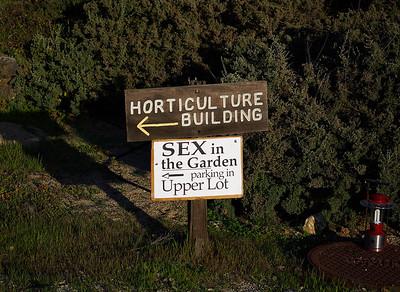 Sex in the garden, parking in Upper Lot.