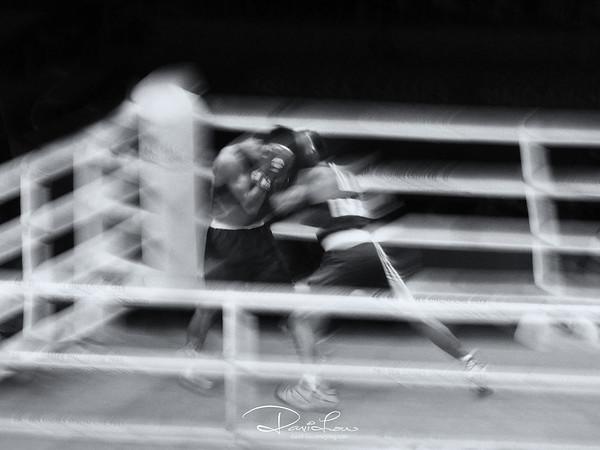 Boxing final, 80 kg (SEA Games 2015)