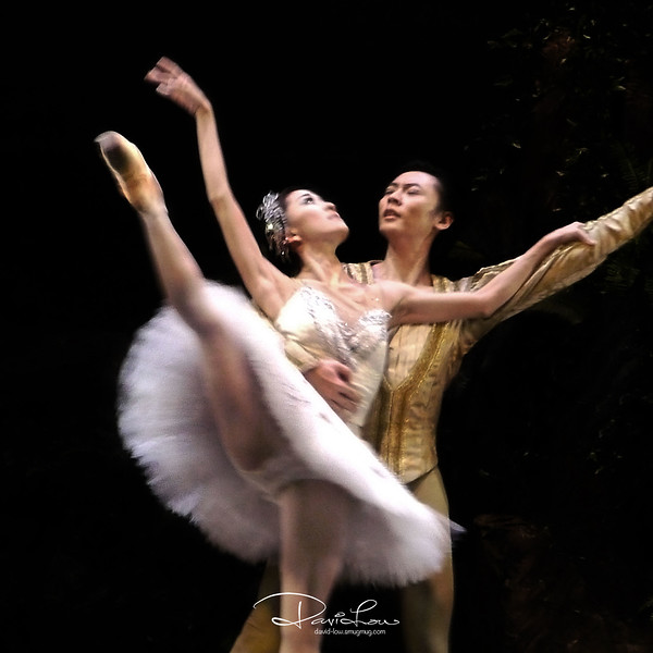 8 - Prince Siegfried chances upon Odette at the lake, magically transformed from a swan into a woman.