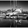 Reflections in Black and White No.1