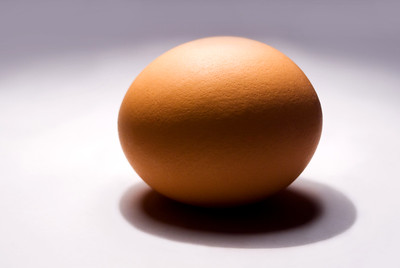 Egg | Almont | Michigan | US  - 0002