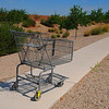 Abandoned Shopping Cart:1
