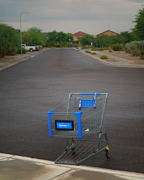 Abandoned Shopping Cart:2