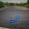 Abandoned Shopping Cart:2